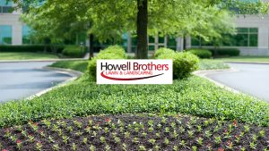 Howell Brothers youtube-channel-art